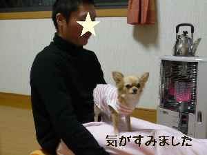 blog2008021703.jpg