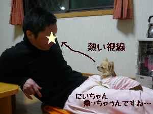 blog2008021704.jpg
