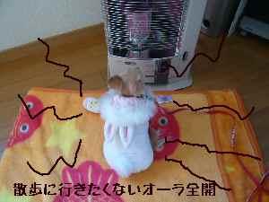 blog2008021801.jpg