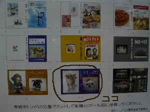 blog2008022202.jpg
