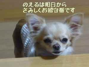 blog2008022203.jpg
