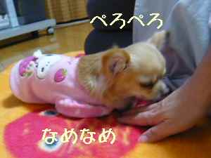 blog2008022502.jpg