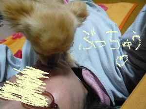 blog20080226.jpg