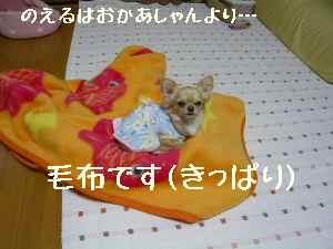 blog2008030205.jpg