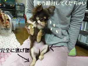 blog2008031005.jpg