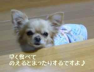 blog2008031201.jpg