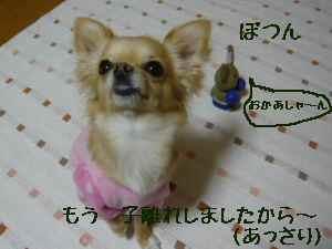 blog2008032803.jpg