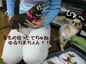 blog2008033105.jpg