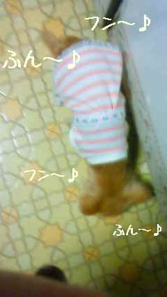 blog2008041402.jpg