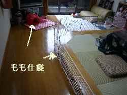 blog2008041701.jpg