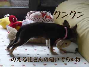 blog2008041702.jpg
