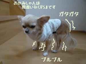blog20080424.jpg