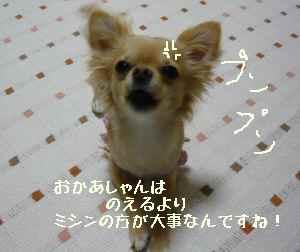 blog2008051502.jpg