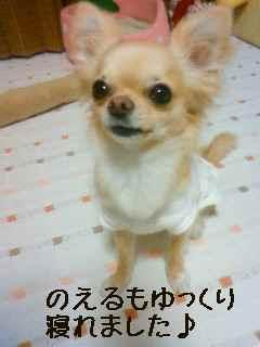 blog2008052403.jpg