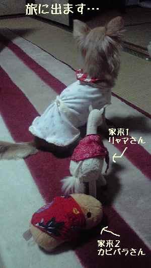 blog2008052502.jpg