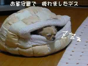 blog20080530.jpg