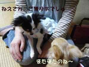 blog2008053102.jpg