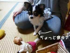 blog2008053104.jpg