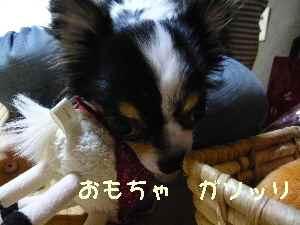 blog2008053105.jpg