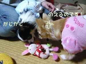 blog2008053106.jpg