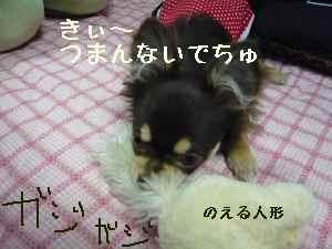 blog2008060207.jpg