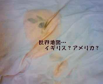 blog2008060402.jpg