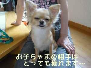 blog2008070701.jpg