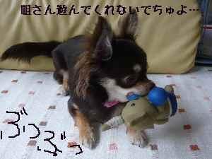 blog2008070704.jpg