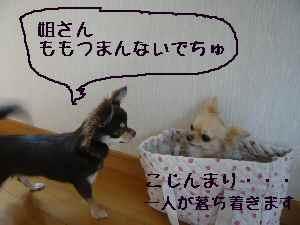 blog2008070705.jpg