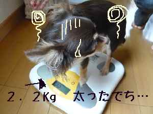 blog2008070708.jpg