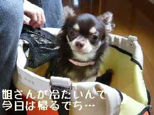 blog2008070710.jpg