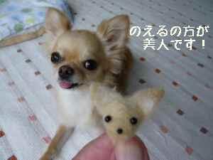 blog2008070711.jpg