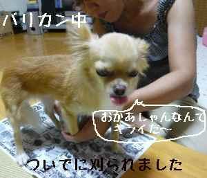 blog2008072105.jpg