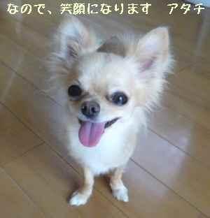 blog2008072401.jpg
