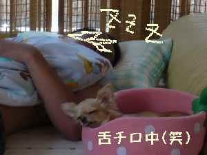 blog2008072501.jpg