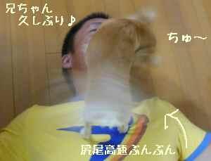 blog2008080503.jpg