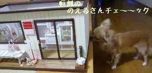 blog2008080602.jpg
