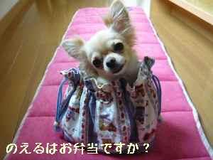 blog2008080804.jpg