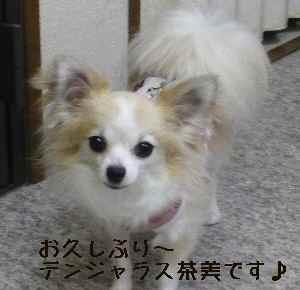 blog2008081406.jpg