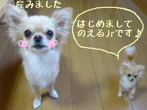 blog2008081802.jpg