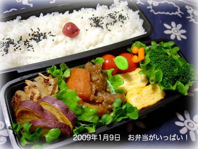 090109お弁当1