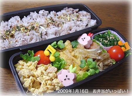 090116お弁当1