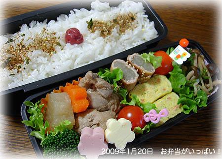 090120お弁当1