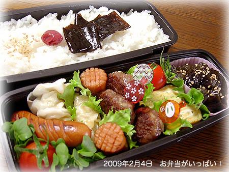 090204お弁当1
