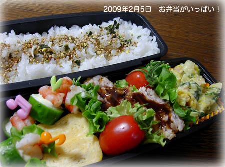 090205お弁当1