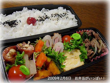 090206お弁当1