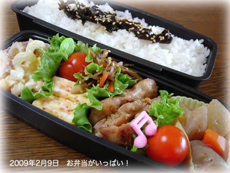 090209お弁当1