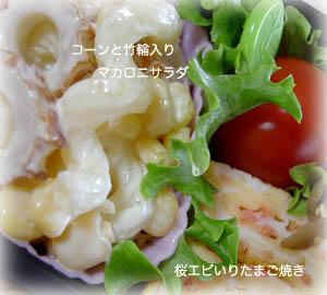 090209お弁当3