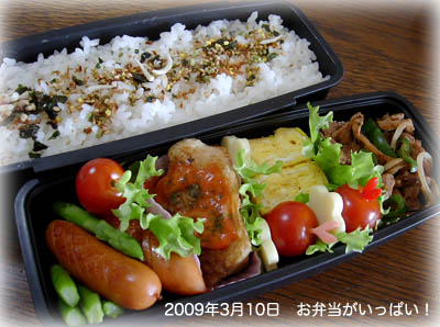 090310お弁当1