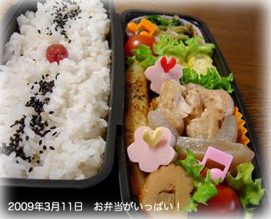 090311お弁当1